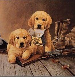 GOLDEN MEMORIES Cartel Vintage de chapa WBMTS0924
