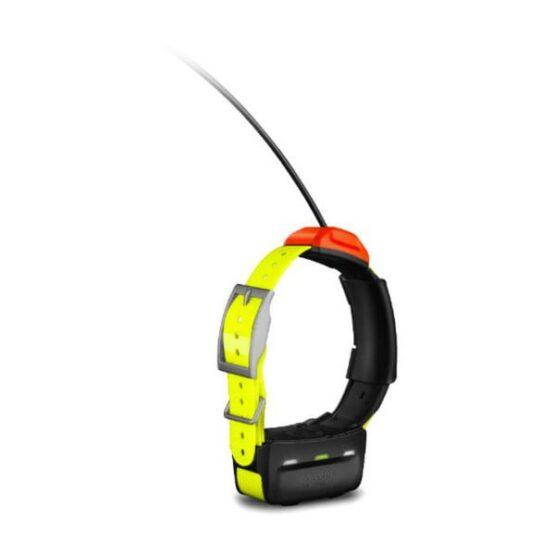 Collar T5 Garmin - El mejor diseño para Adiestramiento de perros 2