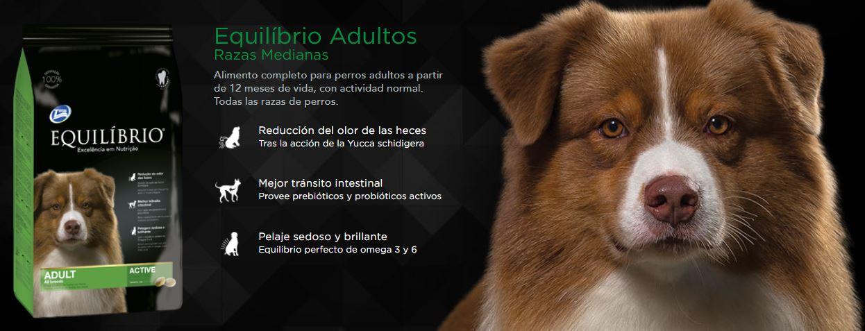 Alimento Para Perros Equilibrio Adultos 36 Kilos 2
