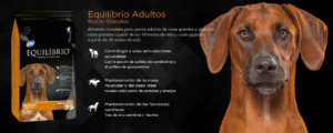 Alimento para Perros Equilibrio Adultos Razas Grandes 36 Kilos 2