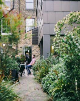 Jardin y Exterior