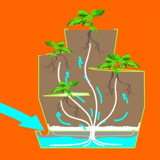 Maceta Vida Eco Amigable 2