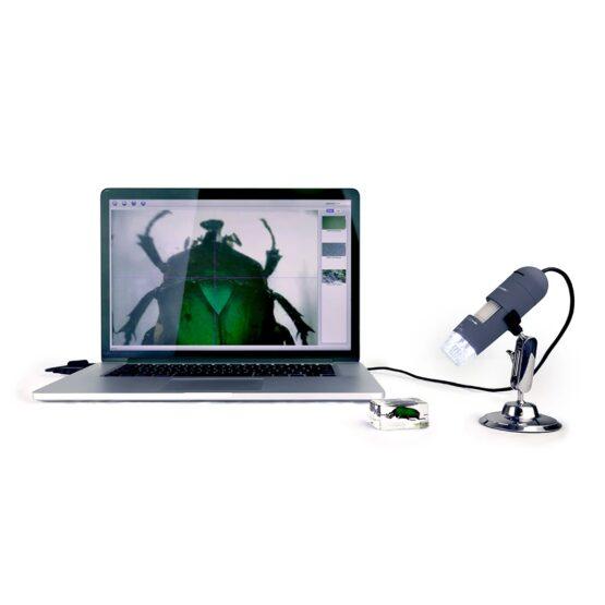 Microscopio Digital Portatil Celestron Deluxe 44302-C 5